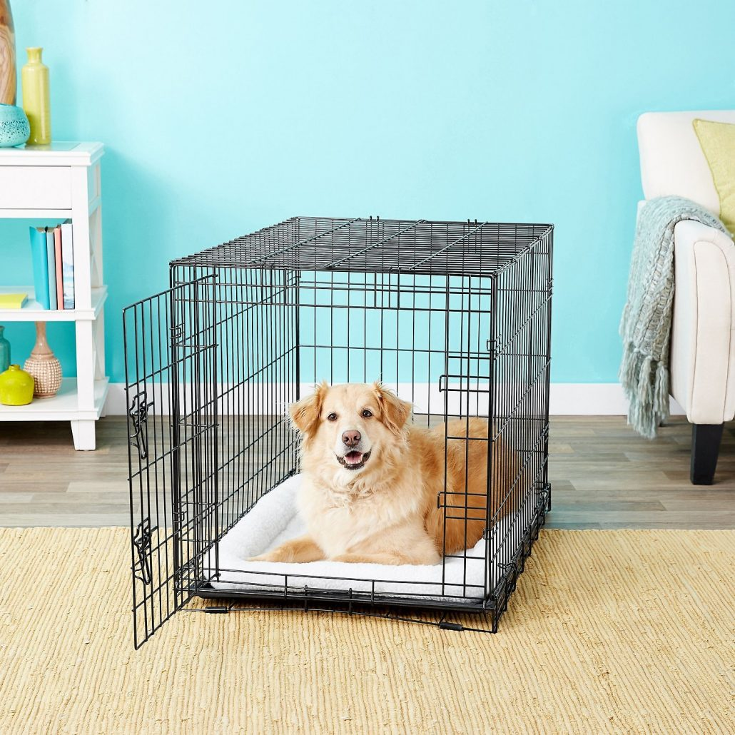 Frisco Fold & Carry Dog Crate